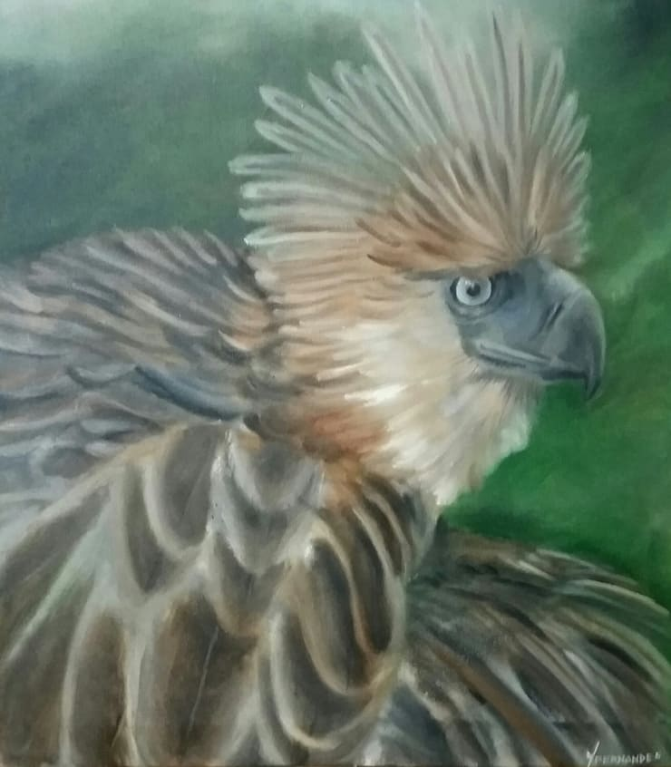 The Endangered Philippine Eagle:  Artwork by Indian Art Ideas