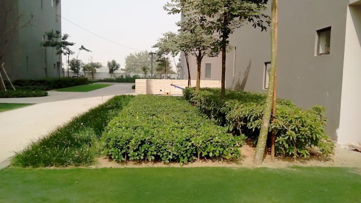 different planting patterns:  Garden by NMP Design