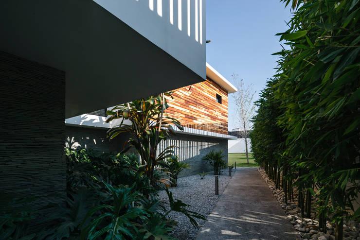Casa Nochebuena: Jardines de estilo minimalista por Dionne Arquitectos