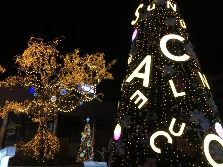 크리스마스 트리 시공: Lightners의  바닥,클래식