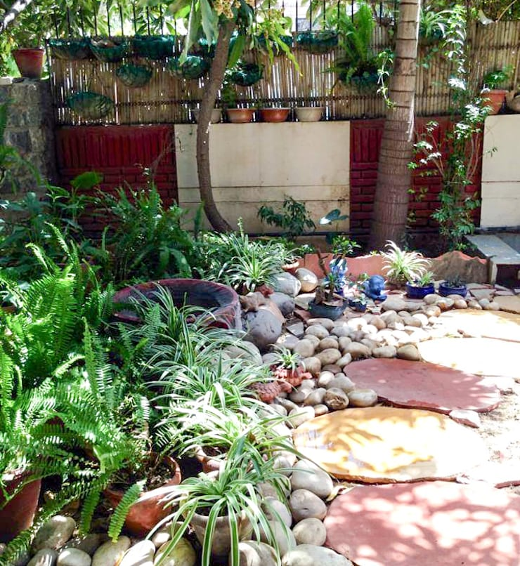 Step onto Micro-Forest in the yard:  Front yard by Grecor,Rustic