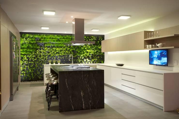 JACARANDAS HOUSE: Cocinas de estilo moderno por Hernandez Silva Arquitectos