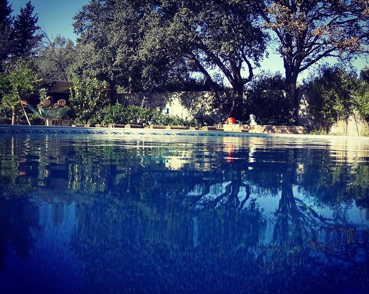 Kolam renang halaman by Sıdar Pool&Dome Yüzme Havuzları ve Şişme Kapamalar