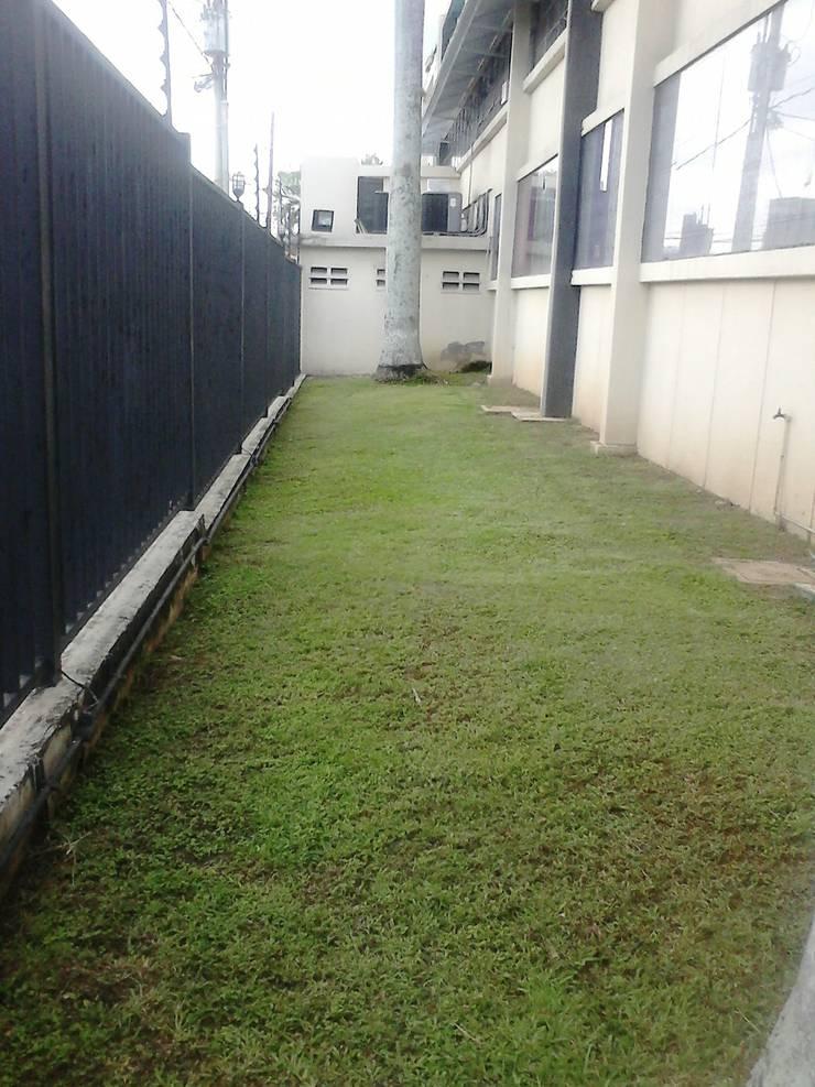 Jardín industrial :  de estilo  por Vida Verde