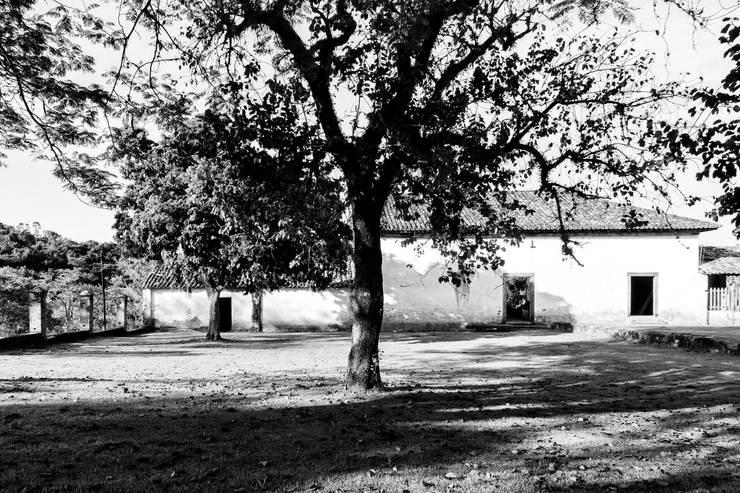 Fazenda Atibaia:   por CAP Fotografia