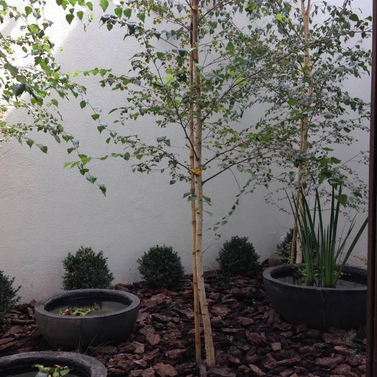 Jardín Familia Huidobro: Jardines de estilo moderno por Aliwen Paisajismo