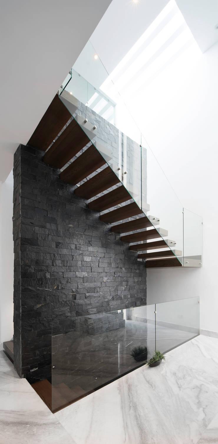 Escalera: Vestíbulos, pasillos y escaleras de estilo  por Nova Arquitectura