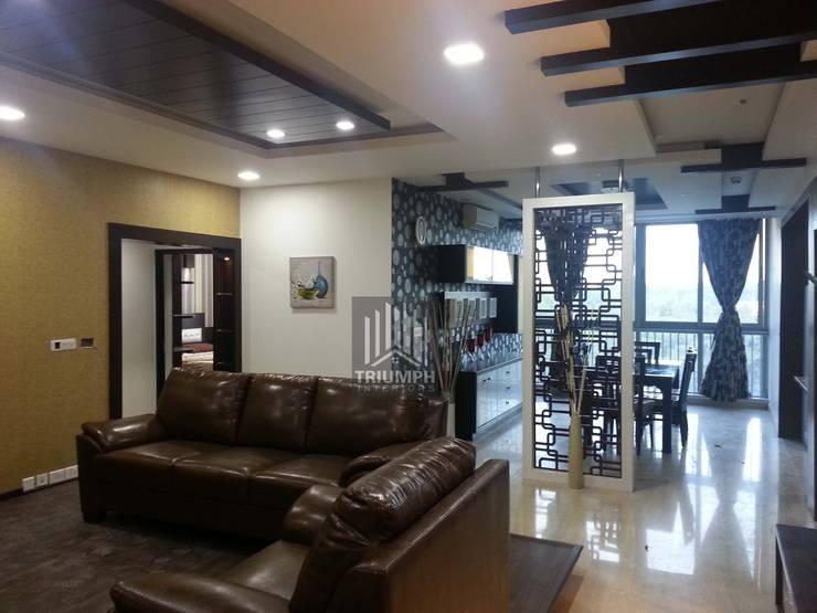 Living & Dinning Partation: modern Living room by TRIUMPH INTERIORS