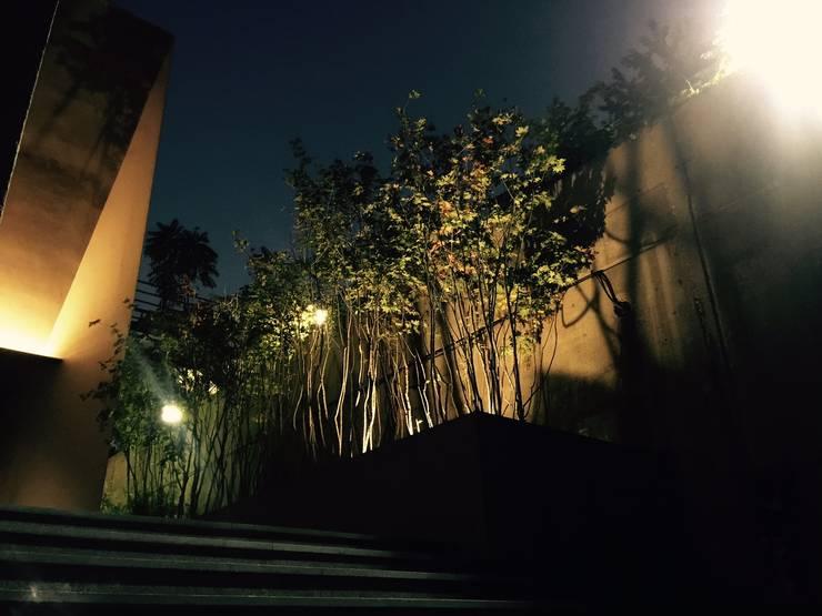 주택정원_나인원 한남 샘플하우스  정원: (주)더숲의  전시장,