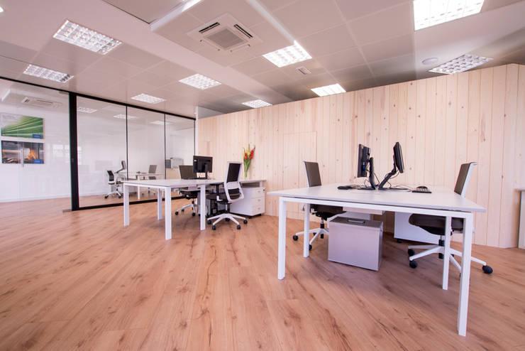 Nuevas oficinas Schott: Edificios de Oficinas de estilo  por BCN Feng Shui ,