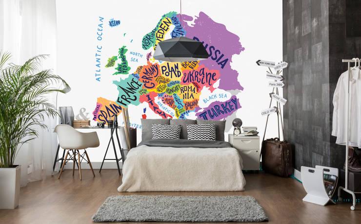 Dijivol Duvar Kağıtları – vol-HAR0422 / Renkli Avrupa Haritası:  tarz Duvarlar