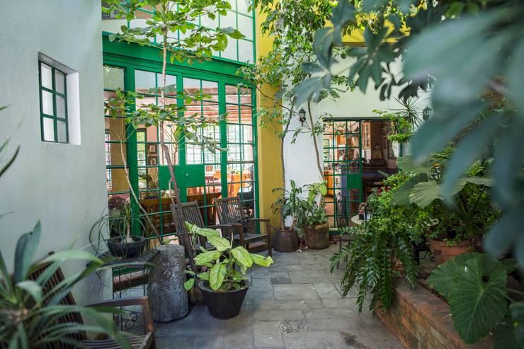Jardin: Jardines de estilo mediterraneo por Bojorquez Arquitectos SA de CV