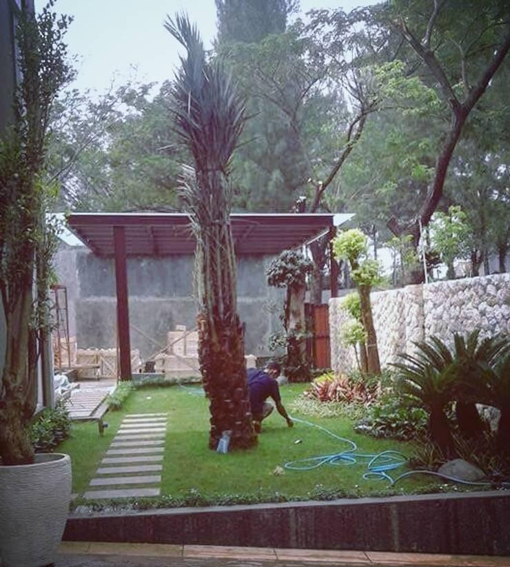 Tukang taman Surabaya -proyek Rumah tinggal:  Halaman depan by Tukang Taman Surabaya - Tianggadha-art