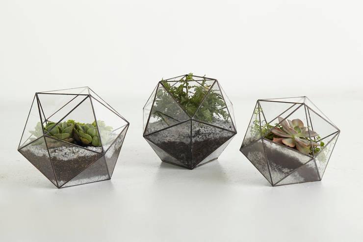 Terrario Talio: Jardín de estilo  por TopList