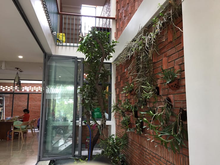 Thiết kế vườn đứng độc đáo được thêm vào ngay trước nhà.:  Cửa sổ by Công ty TNHH Thiết Kế Xây Dựng Song Phát