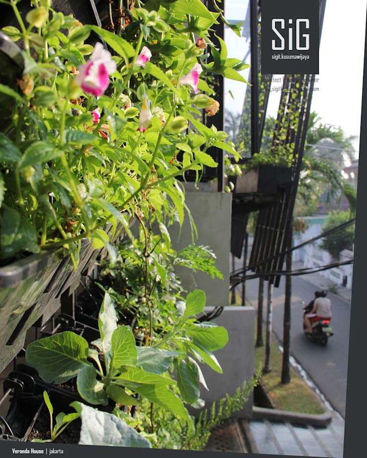 Rumah Beranda – Green Boarding House:  Halaman depan by sigit.kusumawijaya | architect & urbandesigner