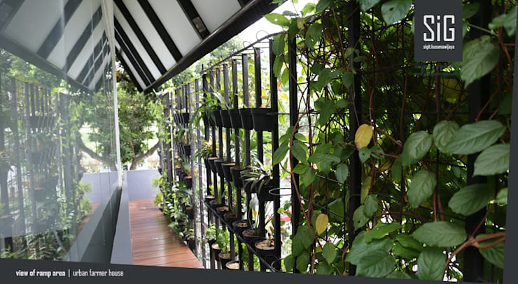 Rumah Kebun Mandiri Pangan (Food Self-Sufficiency House):  Koridor dan lorong by sigit.kusumawijaya   architect & urbandesigner