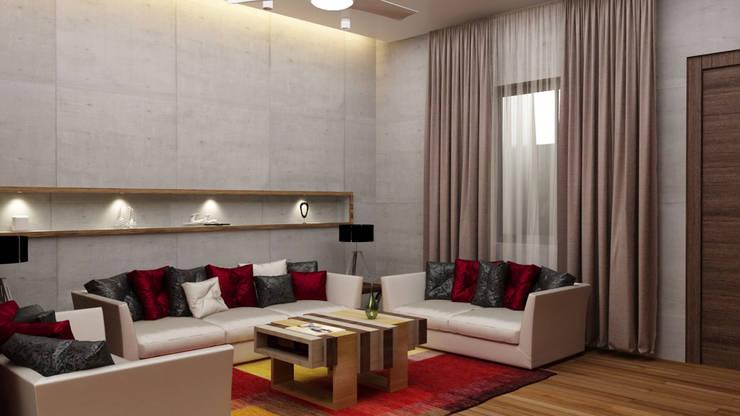 designer Sofa in living room :  Living room by Rhythm  And Emphasis Design Studio ,Modern