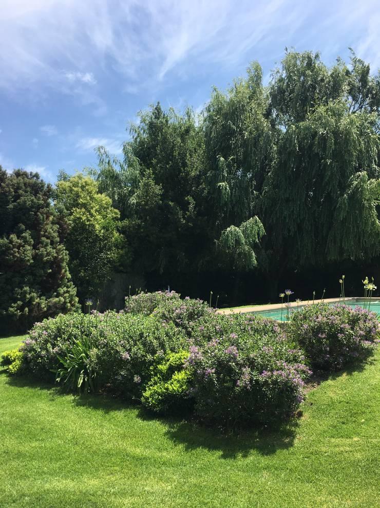 Proyecto de Paisajismo Parcela Talagante: Jardines de estilo  por Aliwen Paisajismo