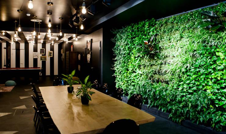 Verticale Tuin Binnen : Verticaal tuinieren? zo maak je een prachtige groene muur!
