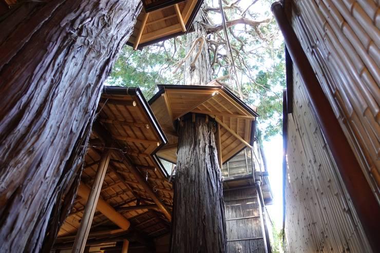 切り欠いた屋根と樹木傘: 守山登建築研究所が手掛けた商業空間です。