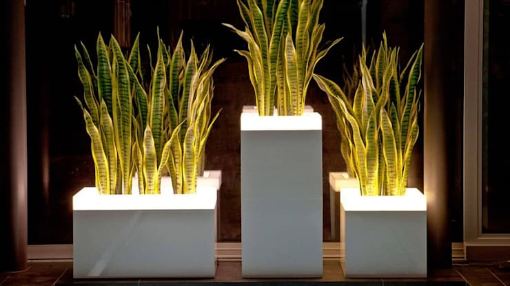 FRP LED Planter:  Commercial Spaces by Scube Creations,Classic