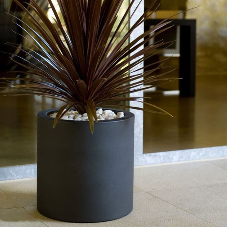 FRP Cylindrical Planter:  Conference Centres by Scube Creations,Classic
