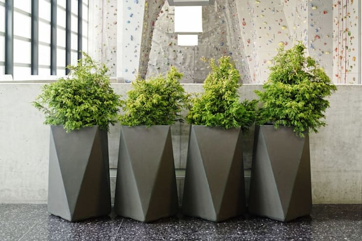 FRP Multi Dimensional Planter:  Office buildings by Scube Creations,Classic