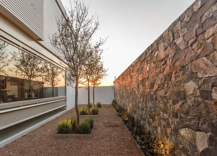 Jardín acceso: Jardines de estilo  por Loyola Arquitectos