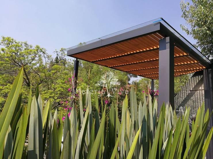 Pequeña pérgola híbrida acero vidrio madera Bosques de las Lomas.: Jardines en la fachada de estilo  por Materia Viva S.A. de C.V.
