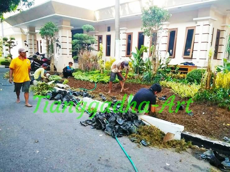 Proses Pekerjaan Pemasangan Taman:  Taman batu by Tukang Taman Surabaya - Tianggadha-art