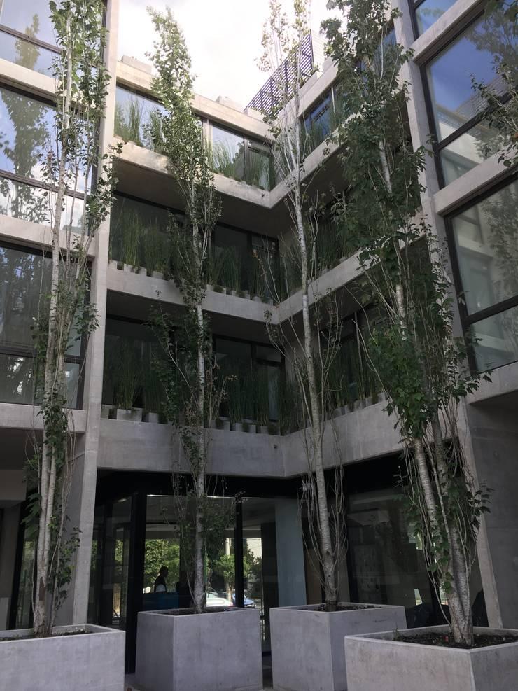 Ejes Cósmicos: Jardines de estilo  por Vivero Antoniucci S.A.,Moderno