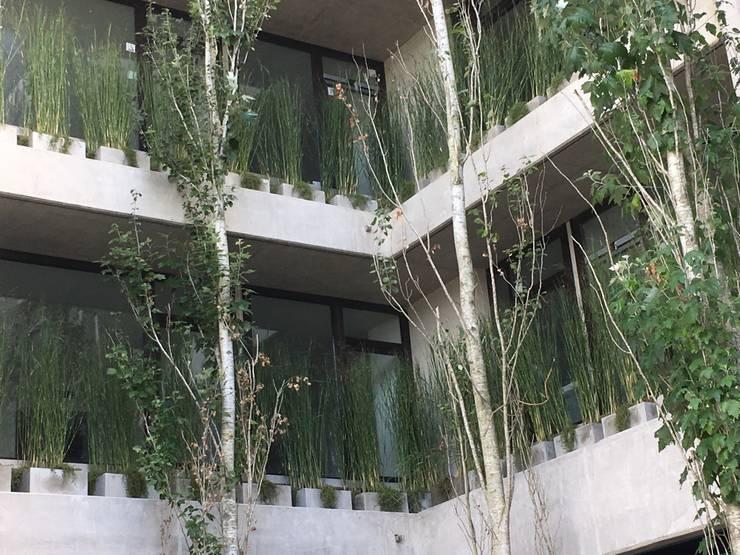 Vegetación en el aire: Jardines de estilo  por Vivero Antoniucci S.A.,Moderno