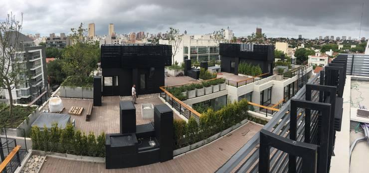 Jardines Privados: Jardines de estilo  por Vivero Antoniucci S.A.,Moderno
