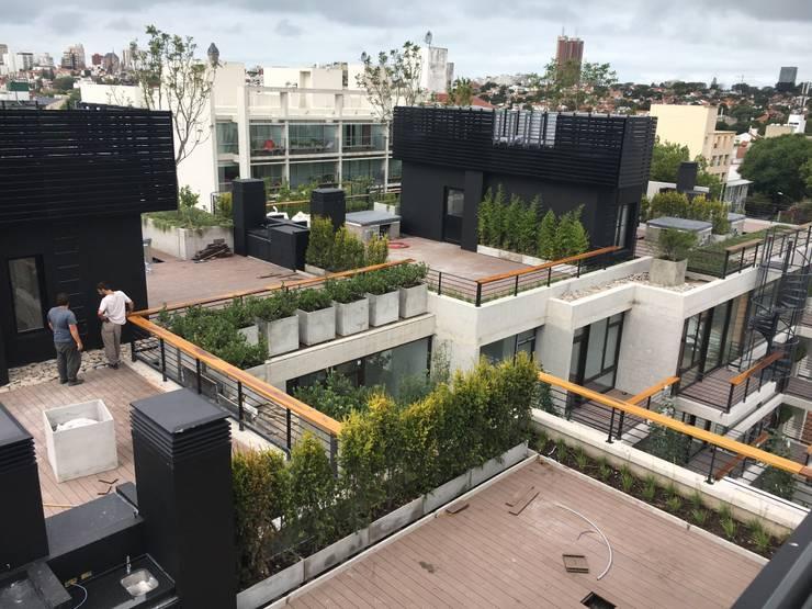 Jardines Privados : Jardines de estilo  por Vivero Antoniucci S.A.,Moderno