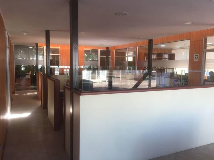 OFICINAS PLANTA LIBRE: Estudios y biblioteca de estilo  por arquiroots