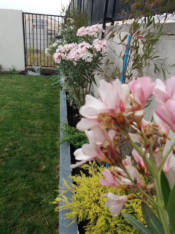 Vista lateral de jardinera: Jardines de estilo  por Deck and Garden