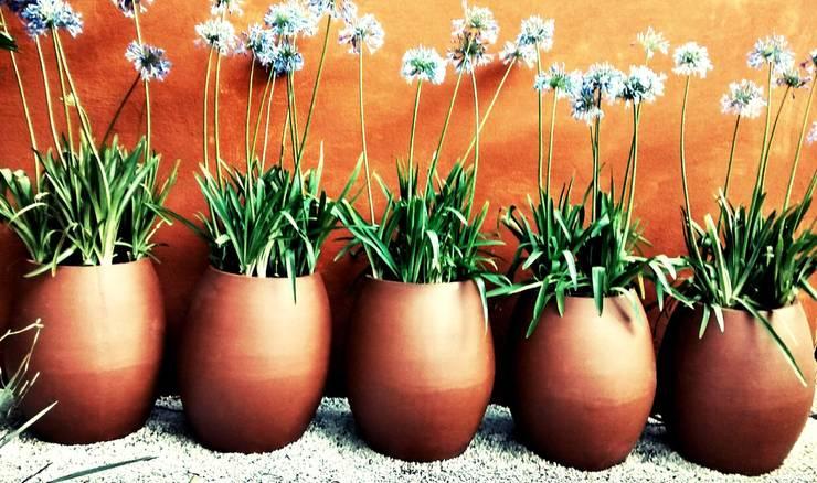 Composição de Vasos: Jardins  por lu alves paisagismo