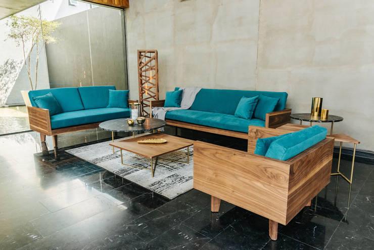 Sala Lapso: Salas de estilo  por TRRA