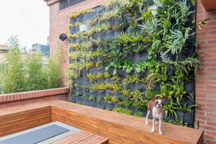 22-106: Jardines de estilo minimalista por ARCE S.A.S