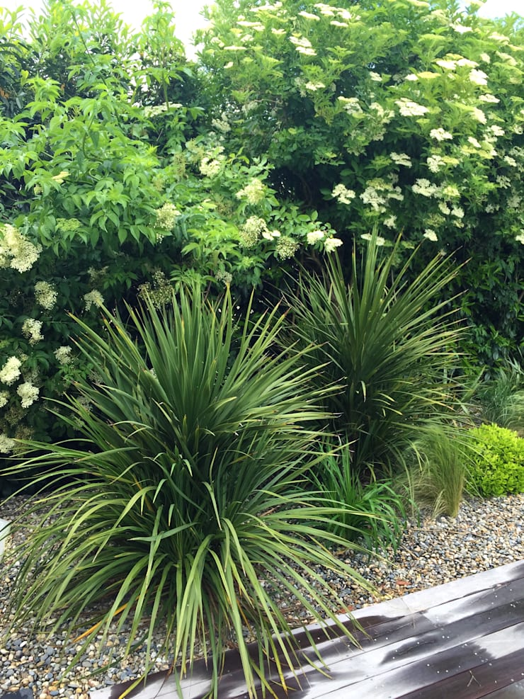 Trente nuances de verts...: Jardin de style  par Paradeisos conception de jardin