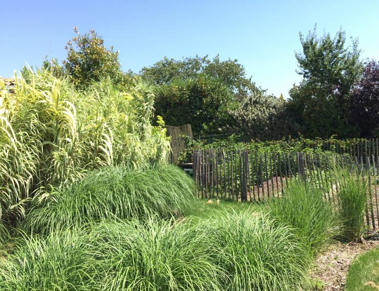 Trente nuances de verts… : Jardin de style  par Paradeisos conception de jardin