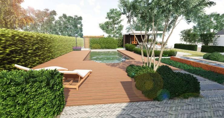 zwembadtuin 3D:   door BMT