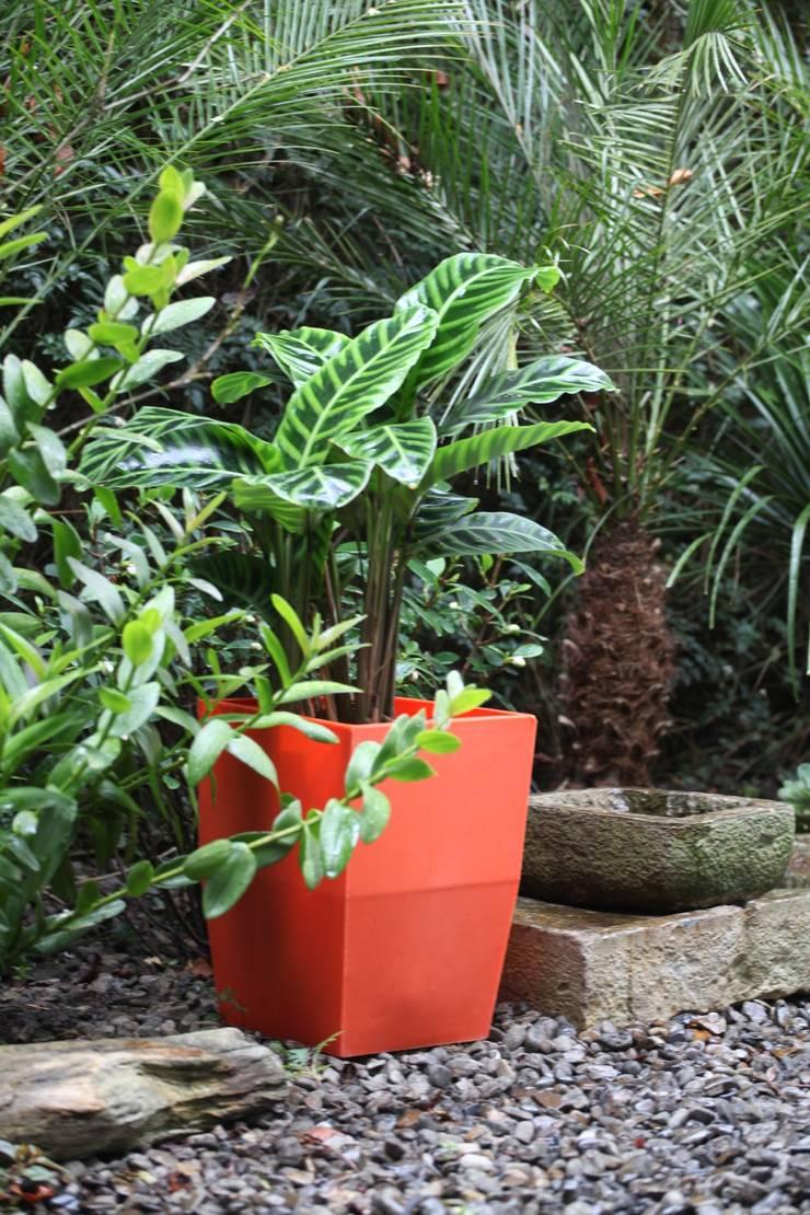 Matera 40cm : Jardín de estilo  por Viridis Productos Eco Amigables