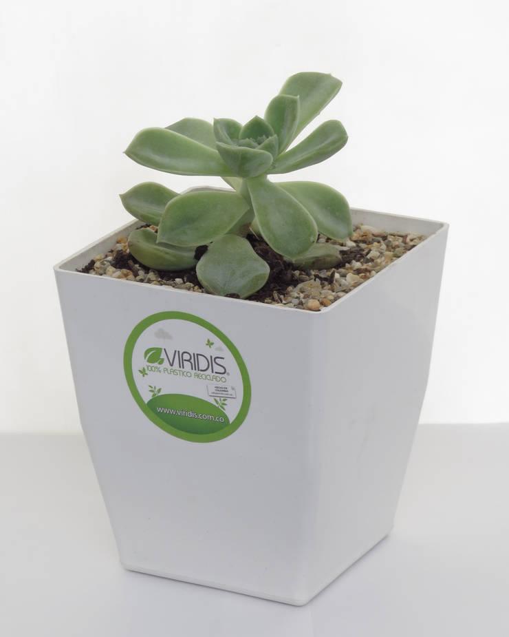 Matera small 12cm: Baños de estilo moderno por Viridis Productos Eco Amigables