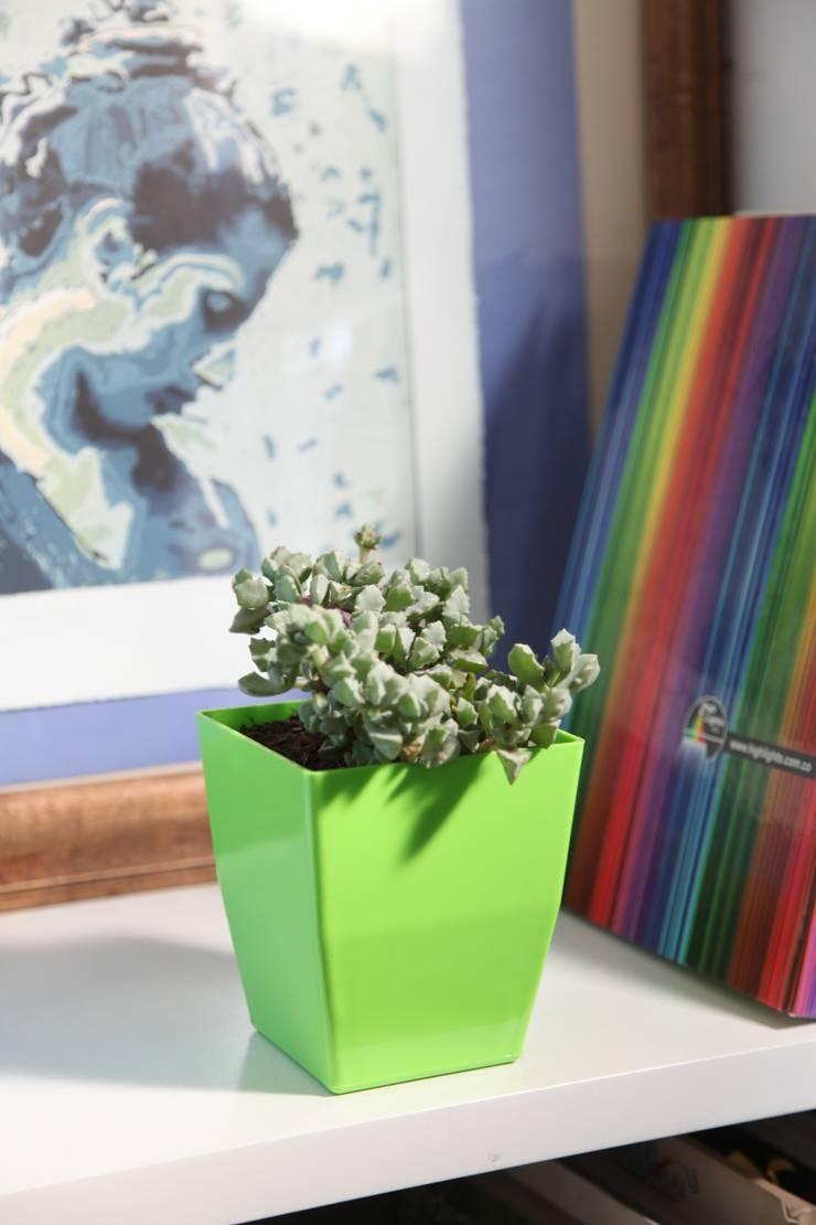 Matera small 12cm: Estudio de estilo  por Viridis Productos Eco Amigables