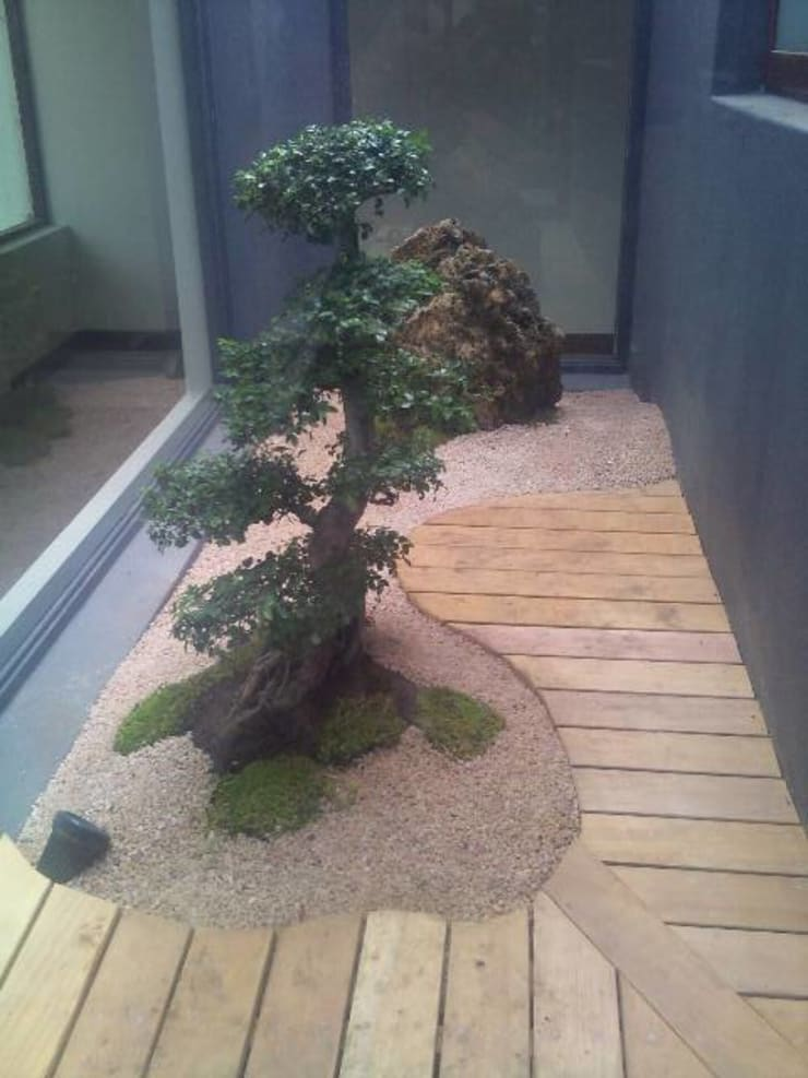 CABELO:  Garden by Japanese Garden Concepts, Asian