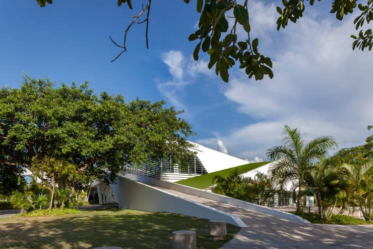fachada hacia el tiro de práctica: Paisajismo de interiores de estilo  por studio arquitectura   Despacho de arquitectos   Cancún