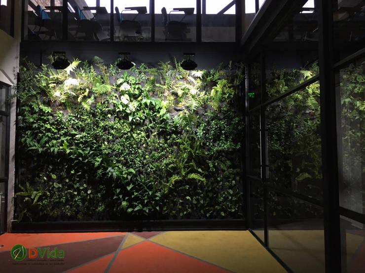 Muros verdes DVida : Estudios y biblioteca de estilo  por DVida Jardines verticales