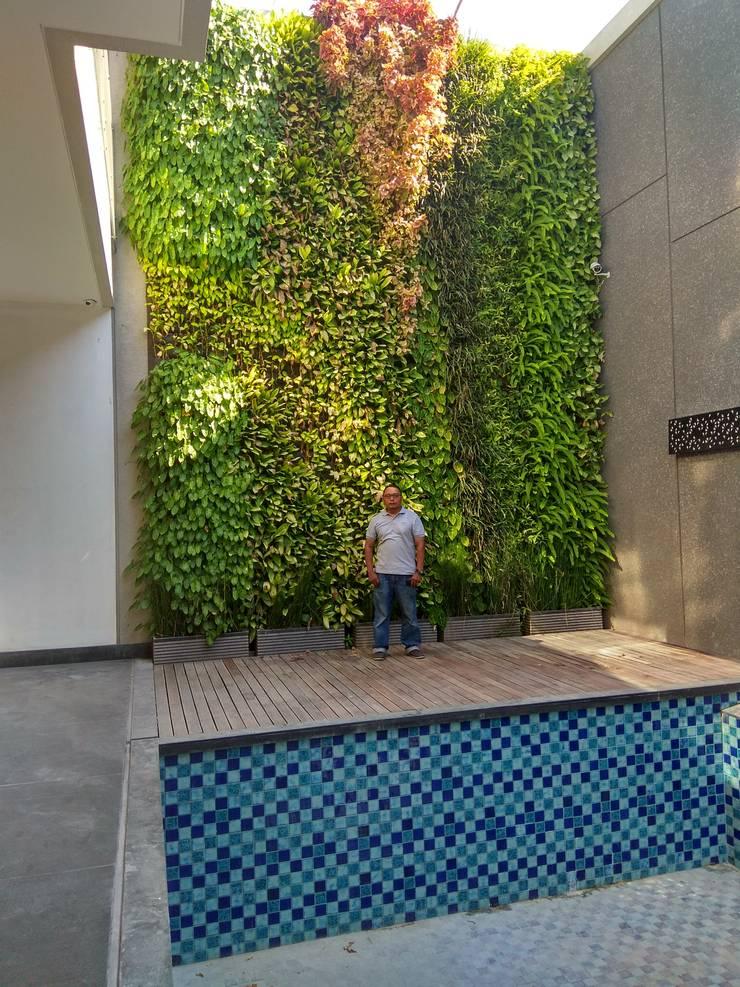 Taman vertikal:  Kolam taman by Tukang Taman Surabaya - Tianggadha-art